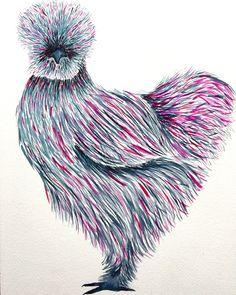 brush pen sketch watercolor Silkie Chicken art
