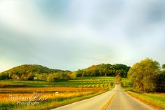 Rolling green hills along country road in Missouri.