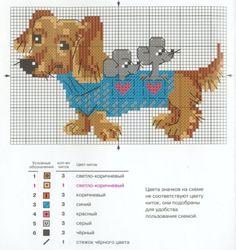 Gallery.ru / Фото #24 - Собаки - tastr