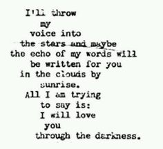 I'll throw my voice into the stars and maybe the echo of my words will be writen for you in the clouds by the sunrise. All i am trying to say is: I love you through the darkness..