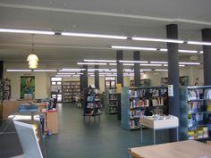 Biblioteca Pública Salvador Estrem i Fa. Zona fons general