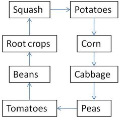 Proper crop rotation keeps soil full of nutrients, which keeps plants strong and productive. Unfortunately, many amateur farmers make the terrible mistake of not replenishing the soil after harvesting. This chart gives a good idea of what to plant from y Veg Garden, Edible Garden, Garden Plants, Potager Garden, Edible Plants, Garden Seeds, Garden Spaces, Garden Landscaping, Homestead Gardens
