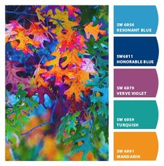 Extraordinary Fall Colors