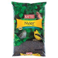 Kaytee Products Food Nyjer Thistle Seed for Bird Pets Natural Cover Treats 8 lbs Wild Bird Food, Wild Birds, Thistle Seed, Animal Cutouts, Animal Throws, Animal Cupcakes, Weed Seeds, Backyard Birds, Gifts