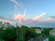 """#2015 #khabarovsk #khv #хабаровск #russia #rus #iphone6plus #iphone6plusphoto #sky #небо #beauty #beautiful #красота #красиво #trees #деревья by hatb_717 Follow """"DIY iPhone 6/ 6S Plus Cases/ Covers/ Sleeves"""" board on @cutephonecases http://ift.tt/1kAxdjF to see more ways to add text add #Photography #Photographer #Photo #Photos #Picture #Pictures #Camera #Only #Pic #Pics to #iPhone6SPlus Case/ Cover/ Sleeve"""