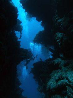 Calvin's Crack...Mesoamerican Barrier Reef.  Roatan Honduras