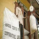 El 50% de las personas más pobres produce el 70% de la alimentación mundial