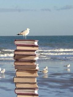 Books by the sea