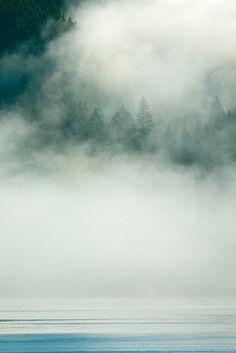 Rising Fog over Hood Canal and the Kitsap Peninsula, WA Misty Eyes, I Love Rain, Foggy Mountains, Travel Photography, Fog Photography, Magical Photography, Water Element, Washington State, Amazing Nature