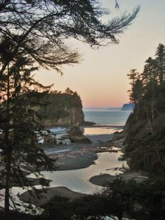 The great thing about La Push is that you can camp right on the beach!