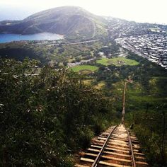 koko head trail. apparently very steep but worth it - much higher than diamond head, better views, more history?