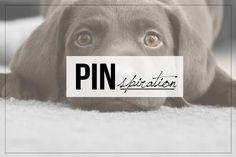 Pinterest péntek ~ PIN MAGAZIN Friday