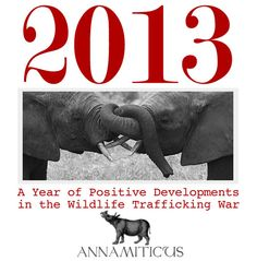 2013: A Year of Positive Developments in the Wildlife Trafficking War