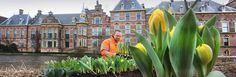 Netherlands: Den Haag