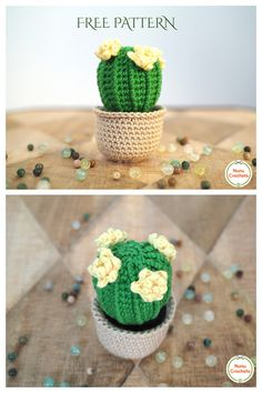 Fun Amigurumi Cactus Free Crochet Patterns - DIY Magazine Crochet Cactus Free Pattern, Doll Amigurumi Free Pattern, Crochet Keychain Pattern, Crochet Teddy, Diy Crochet, Crochet Accessories, Crochet Flowers, Crochet Projects, Barrel Cactus
