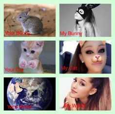 Ariana is my Bunny, Cat and my World ❤️