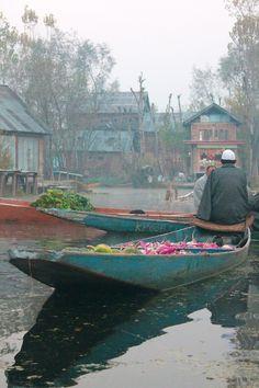Srinagar, Kashmir, India November 17, 2013