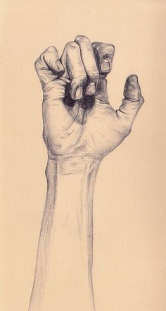 """Hand"" by Henrietta Harris. graphite drawing. henriettaharris.com"