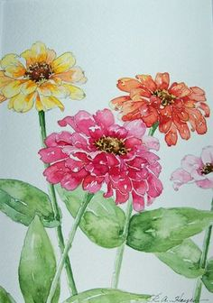 Zinnias In Watercolor ` Watercolor Zinnias zinnias in watercolor / watercolor zinnias ` watercolor zinnias tutorial ` zinnias in watercolor ` watercolor flowers zinnias Watercolor Pictures, Watercolor Cards, Watercolour Painting, Watercolor Flowers, Painting & Drawing, Watercolours, Watercolor Portraits, Watercolor Landscape, Abstract Paintings