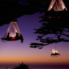 Incredible hanging tents with room for two!