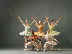 The Washington Ballet - The Sleeping Beauty Sleeping Beauty Ballet, Australian Ballet, Storybook Characters, Dance Poses, Beautiful Costumes, Ballet Photography, Royal Ballet, Ballet Beautiful, Ballerina