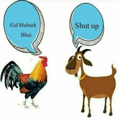 Funny Jokes In Hindi, Very Funny Jokes, Funny Quotes, Funny Memes, Funniest Jokes, Humor Quotes, Qoutes, Funny Stuff, Eid Mubarak Quotes