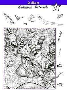 Hidden Object Puzzles, Hidden Picture Puzzles, Hidden Objects, Colouring Pages, Free Coloring, Coloring Sheets, Coloring Books, Hidden Pictures Printables, Visual Perceptual Activities