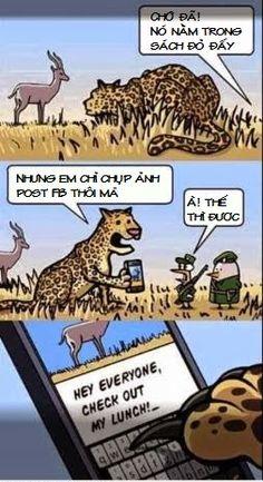 Khi loài vật sử dụng mạng xã hội :)
