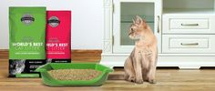 Possible Free Worlds Best Cat Litter From Moms Meet Ambassador Program. Your sampling Kit includes: A free bag of Worlds Best Cat Litter and bonus gifts for you and $5.00 coupons to share with your group members!   Free Worlds Best Cat Litter