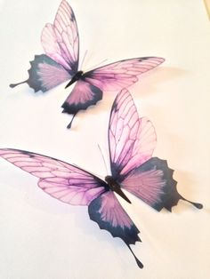 4 Pink Champagne 3D Butterflies Butterfly Decal by MyButterflyLove