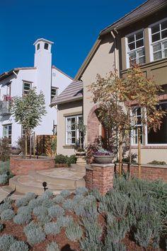 No-turf frontyards