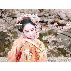 【love.rilarchoco】さんのInstagramをピンしています。 《舞妓写真、この度でラストです。 長々と。。4枚も失礼いたしました(*´ω`*) 白川沿いの道、何とも素敵な雰囲気ですね。 立ち入った瞬間、古都の華やかな雰囲気に、うっとり魅了されてしまいました。。♪ #日本 #京都 #祇園 #花街 #旅行 #舞妓 #着物 #春 #桜 #花見 #私 #japan #kyoto #gion #hanamachi #travel #maiko #kimono #spring #cherryblossoms #me 撮影日:2016/04/04(月)》