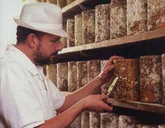 Al zijn er maar zeven, de ene Stilton is de andere niet. Slechts zeven kaasmakerijen produceren de Stilton kaas in het gebied dat door zijn PDO-label strikt is afgebakend. Zes van de zeven situeren…