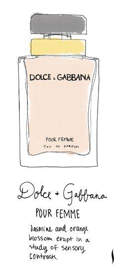 Dolce & Gabbana Pour Femme #sephora #fragrance #topnotes