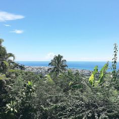 Another beautiful day in #paradise   #iledelareunion #lareunion #gotoreunion #green #blue #bluesky #igers974 #igerslareunion by whatfitsness