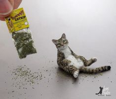 "Dollhouse Miniature ""Chillin Tabby Cat"" sculpture complete with catnip"