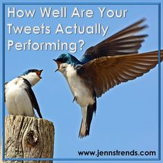 If you've wondered how valuable a tweet really is or how your tweets perform, there's a simple way to check your Twitter analytics and find out for sure.