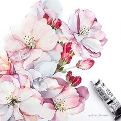 Beautiful artwork 💫💛👏 🔺 by ~~~ Feel free to be inspired of art with 😌 Watercolor Projects, Drawing Projects, Watercolor Cards, Watercolor Flowers, Watercolor Paintings, Plant Illustration, Botanical Illustration, Watercolor Illustration, Botanical Art