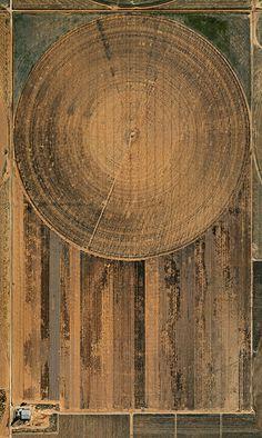 Edward Burtynsky. Aerial photograph of Pivot Irrigation, High Plains, Texas Panhandle, USA, 2011