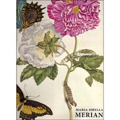 Sibylla Merian, Watercolor And Ink, Painting, Products, Libros, Art, Painting Art, Paintings, Beauty Products
