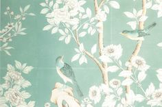 markdsikes: gracie wallpaper