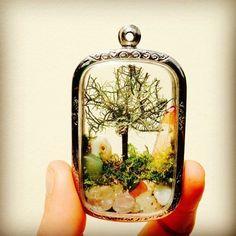 【テラリウム】瓶をリサイクル!小さなミニチュア・ガーデンを愉しもう♪の画像 | ギャザリー
