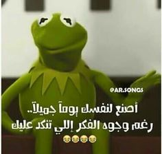 Funny Frogs, Cartoon Quotes, Arabic Funny, Funny Comments, Kermit, Grinch, Motivation, Animals, Beautiful Lyrics