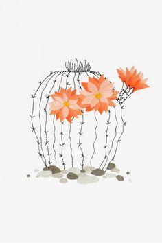 Cactus In Bloom  pattern - Intermediate - DMC