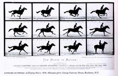horse in motion. Early film