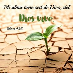Salmos 42.2 Anexo Biblical Verses, Bible Verses, Abusive Father, Christian Images, Prayer Board, Jesus Loves Me, Quotes About God, Dear God, Historical Fiction