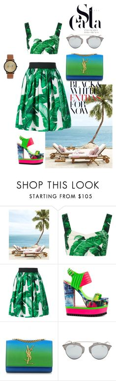 """""""green"""" by artemisyuri on Polyvore featuring Dolce&Gabbana, Privileged, Yves Saint Laurent, Christian Dior and Ted Baker"""