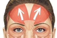 Beauty Secrets, Diy Beauty, Beauty Skin, Health And Beauty, Beauty Hacks, Face Wrinkles, Prevent Wrinkles, Yoga Facial, Beauty Tips