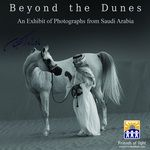 Beyond the Dunes http://le.qa/ysCs6T
