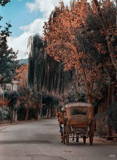 Adalar-İstanbul  ByOsman Topçu
